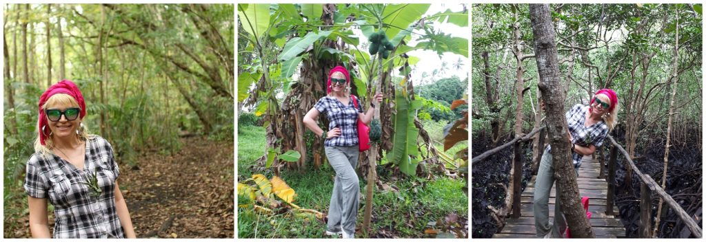 Farma začina na kojoj raste sve što poznajemo -cimet, kurkuma, vanila, ylang lang...
